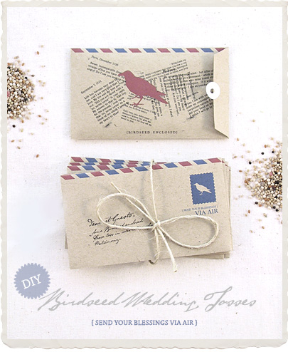 DIY Birdseed wedding Tosses: Mini Airmail Envelopes