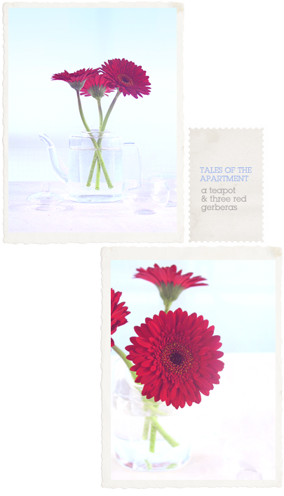 a teapot and three red gerberas